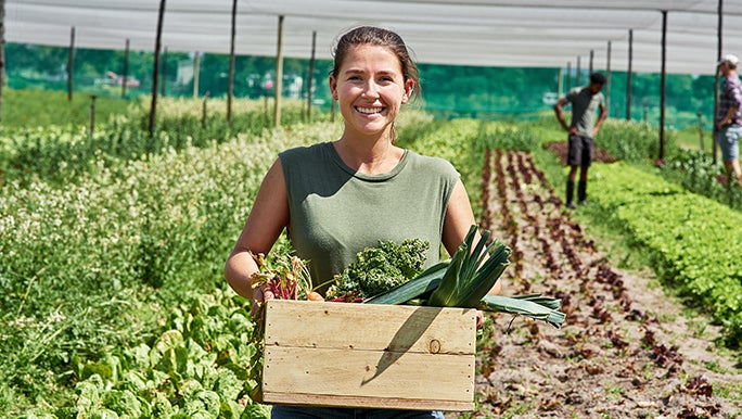 Lady in a paddock holding a wooden crate filled with organic food.