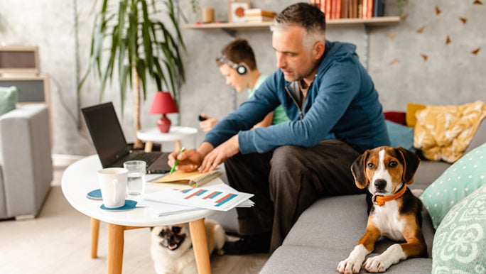 A work from home dad is kept company by his son and two dogs.