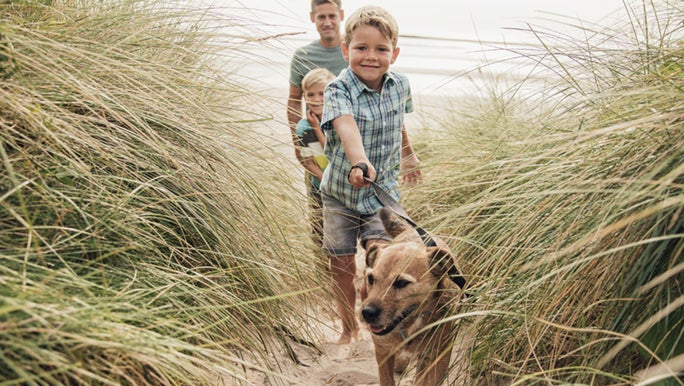 A family walks their dog on a sand dune, the dog definitely believes in the benefits of walking everyday.