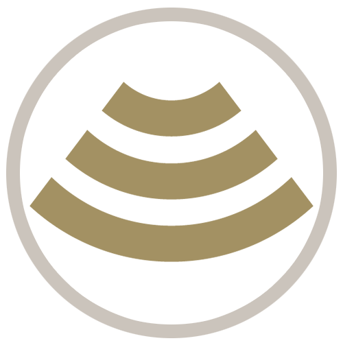 Sonography Gold Icon