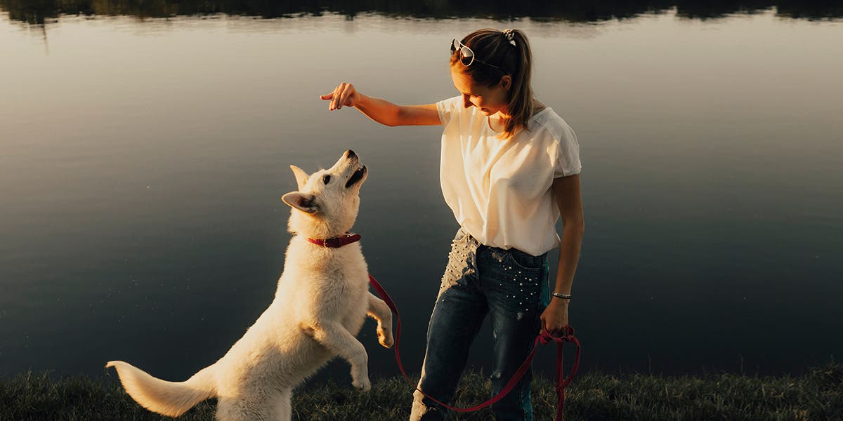 Woman showing good leadership habits with a dog