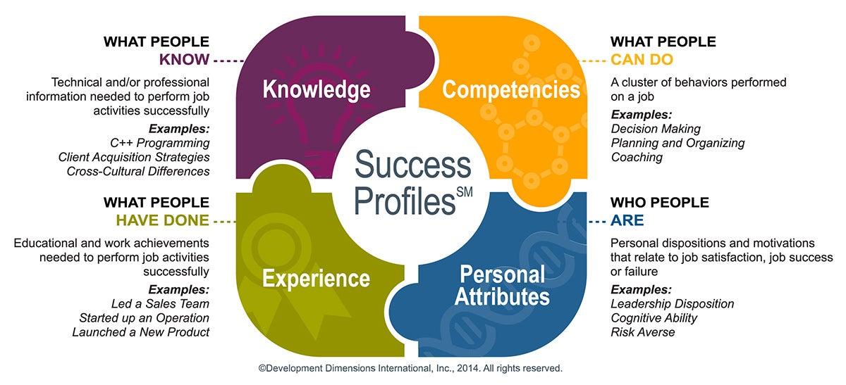 DDI Success Profiles (SM)
