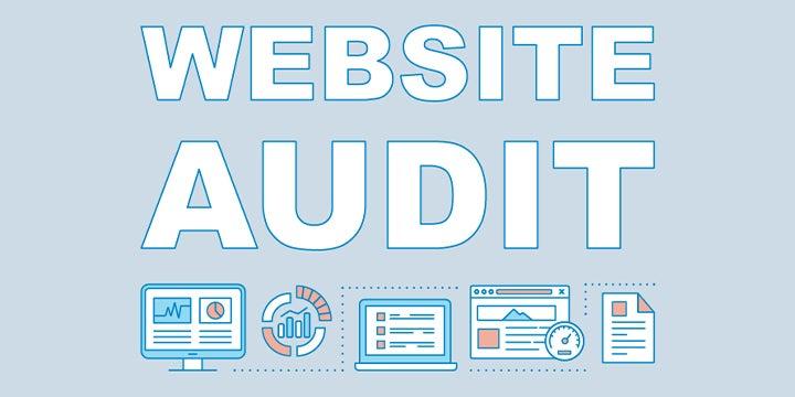 website audit graphic