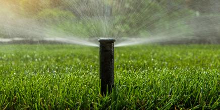sprinkler in a lawn