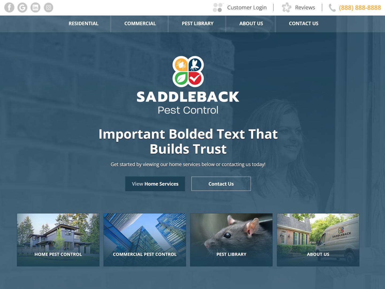 screenshot of saddleback site design
