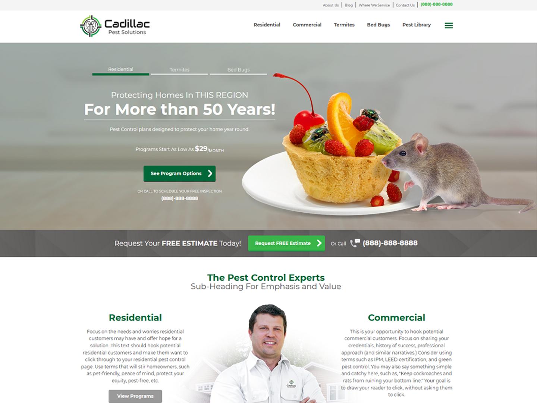 screenshot of cadillac site design
