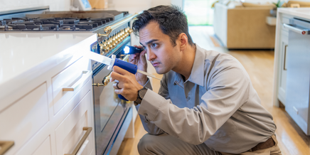 technician treating a kitchen for pests