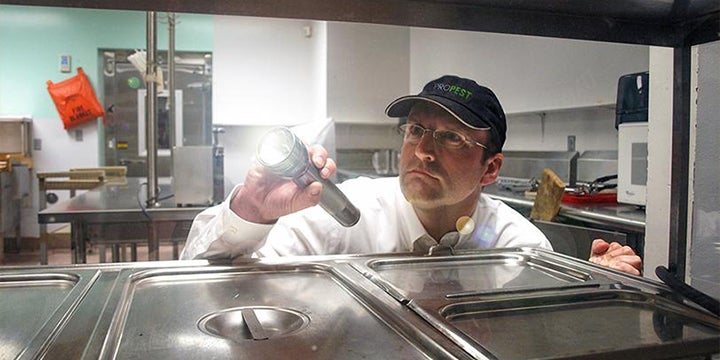 a technician inspecting a commercial kitchen