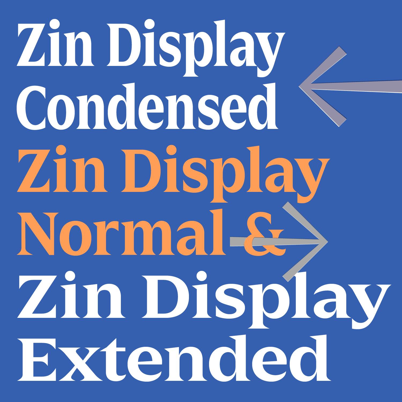 ZinDisplay-02.png
