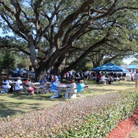 The canopy of oaks has provided shade for many celebrations.