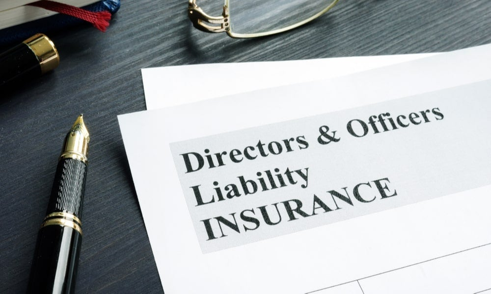 Directors and officers liability insurance-min.jpg