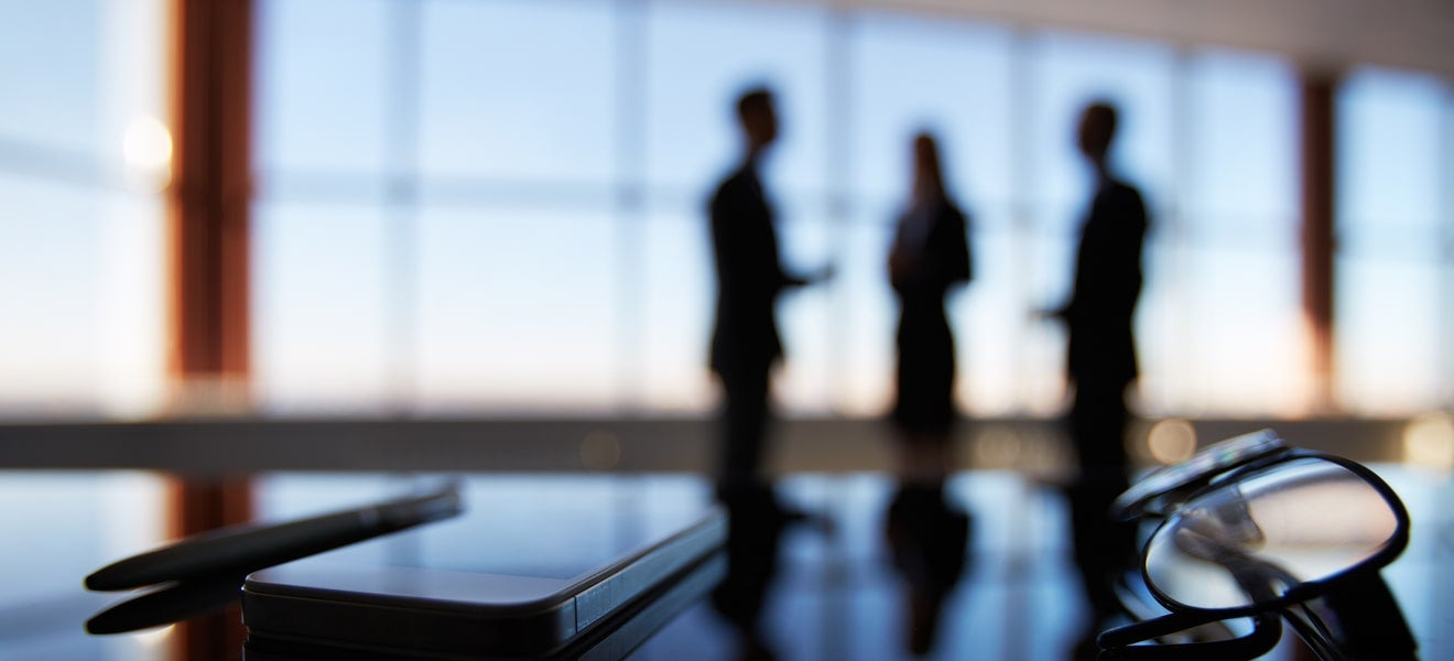 Do board committees hinder decision-making?