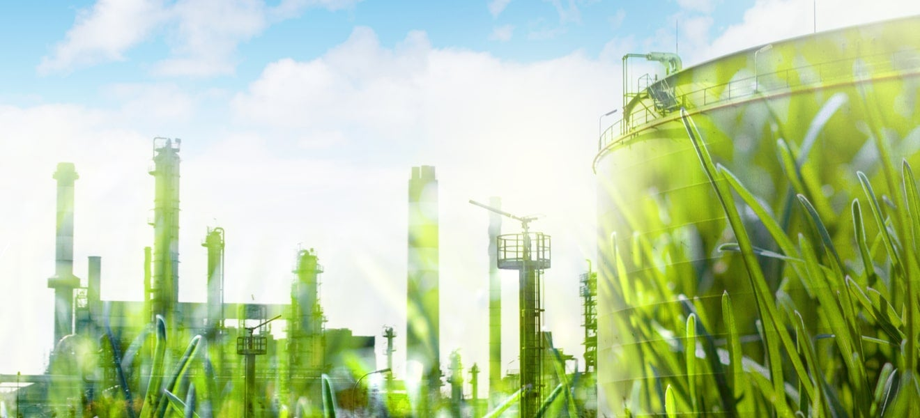 How to spot and avoid greenwashing in supply chains