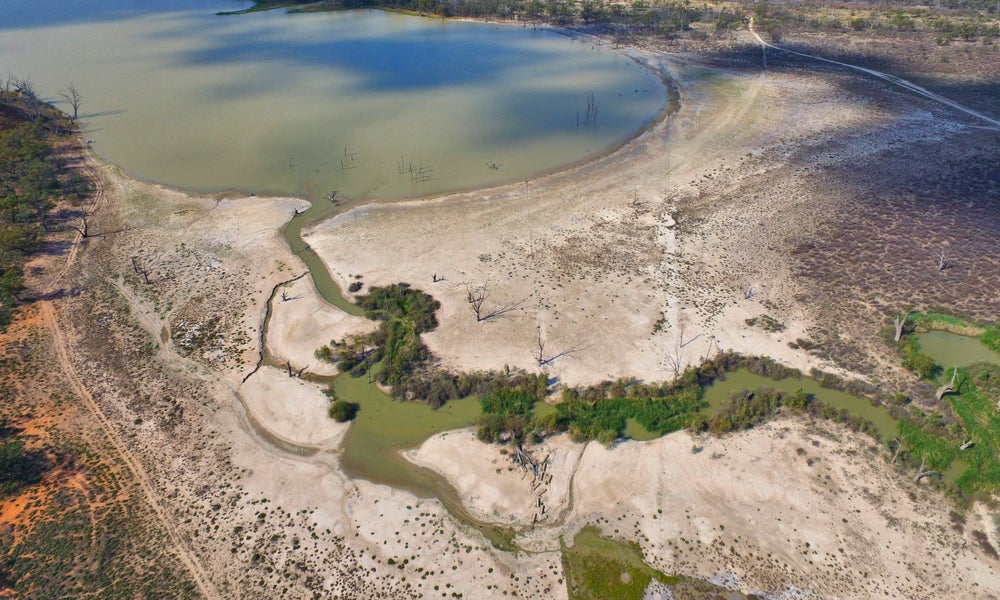 Drought stricken Murray rivery aerial view -min.jpg