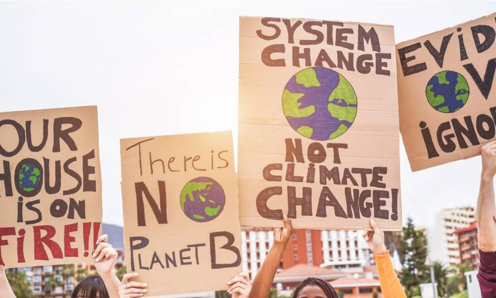 Climate change protestors holding signs (1).jpg