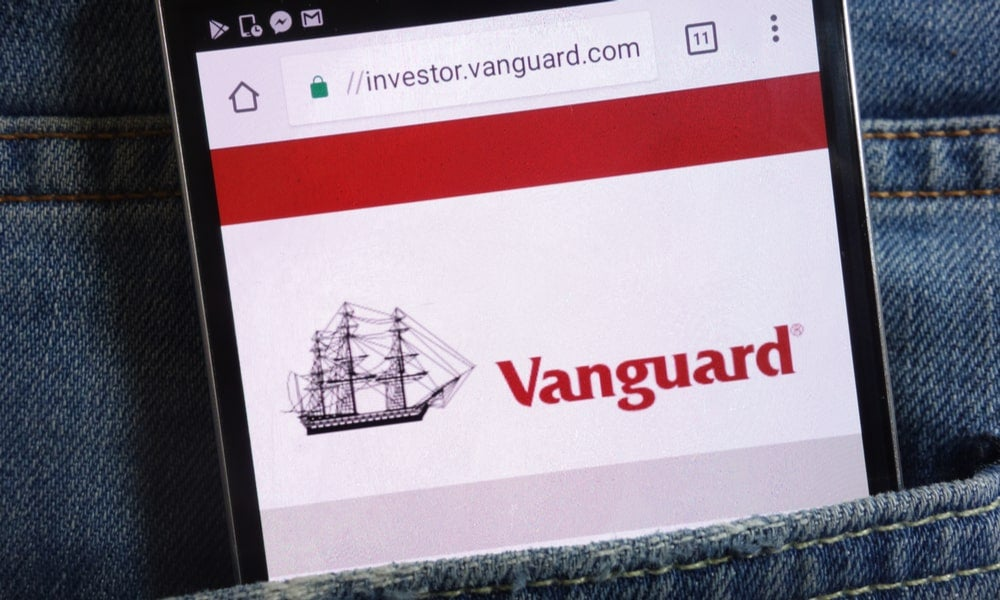 Global fund managers such as Vanguard are increasingly used by retail investors as a low-cost method of accessing the market-min.jpg