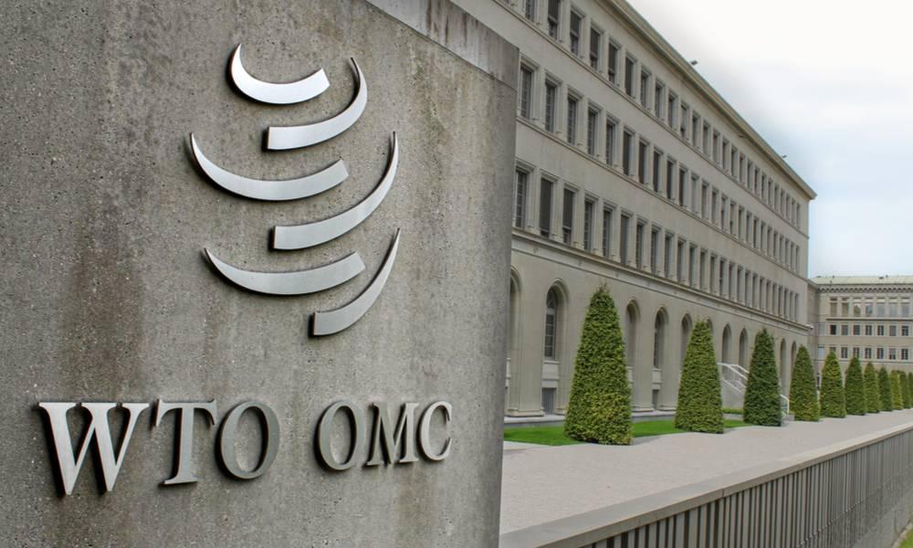 World Trade Organization HQ in Geneva, Switzerland  (1).jpg
