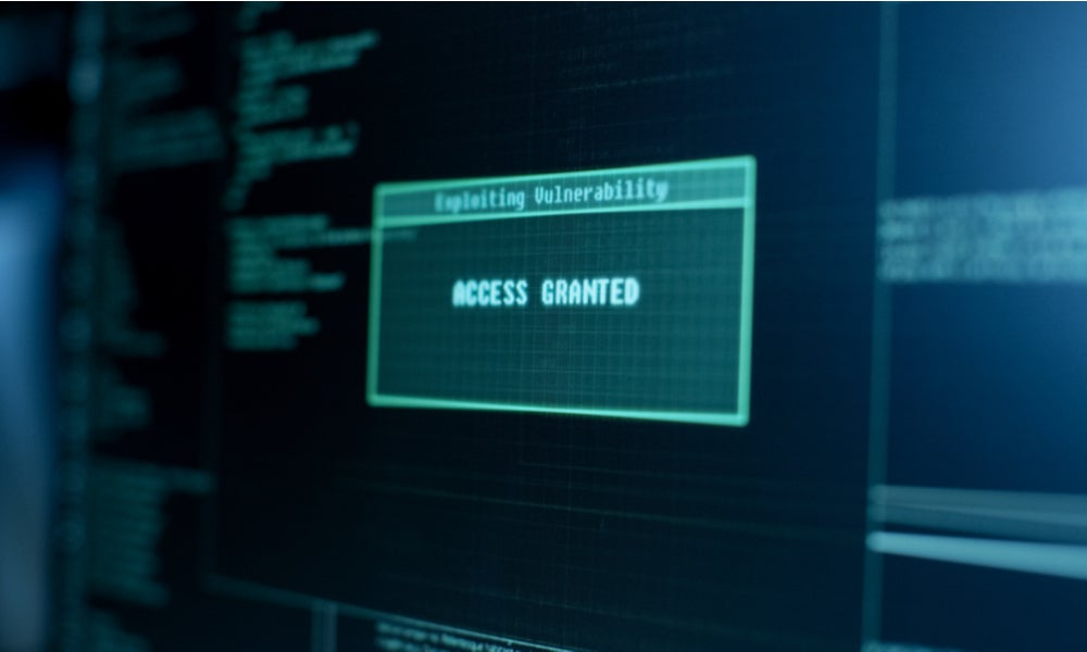 Computer screen reads access granted and exploiting vulnerability-min.jpg