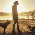woman with two dogs during sunrise