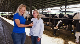 two women looking at a digital pad in front of dairy cows