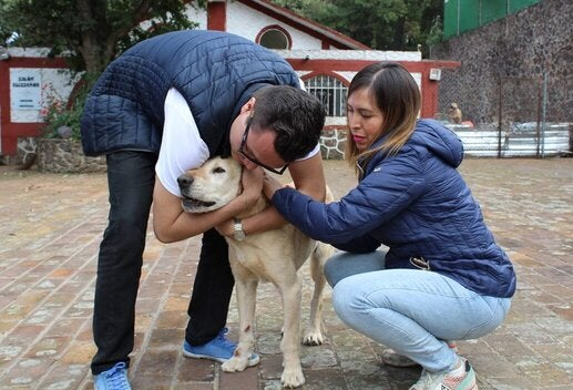 two people surrounding a dog, one is hugging the other petting