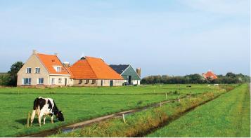eine Kuh auf einem Feld, die vor einer Scheune steht