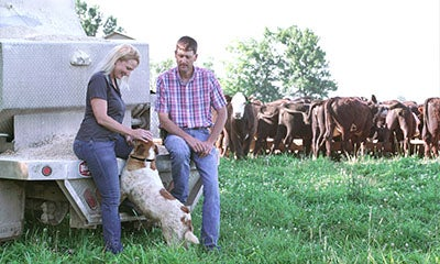 man and woman stood in a field in front of cows with the woman stroking her dog and smiling