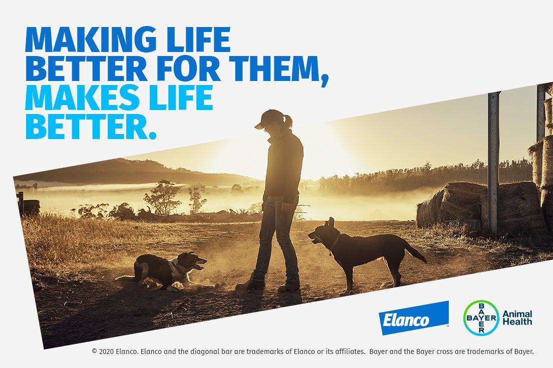 making life better for them, makes life better diagonal logo