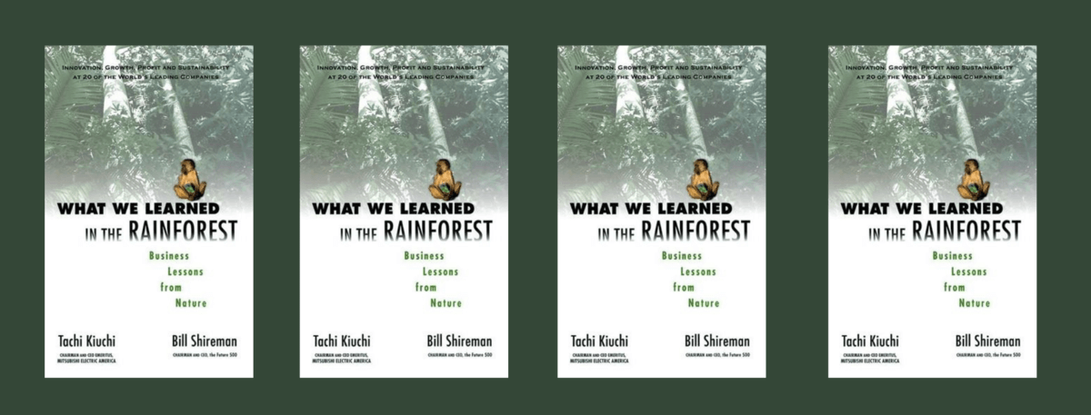 Book cover - WHAT WE LEARNED IN THE RAINFOREST