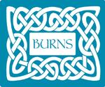 Burns Pet Food, Financial Analyst , Jake Pyle