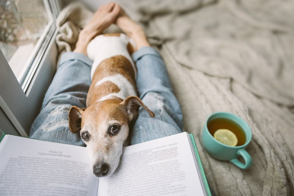 WILLS & ESTATES   HOW TO DEAL WITH PETS IN A WILL