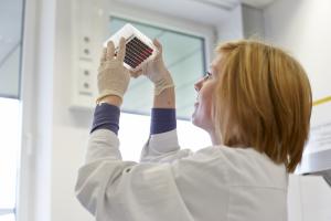 DKMS lab scientist holding an instrument