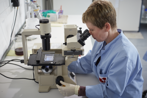 Lab dkms person looking at microscope