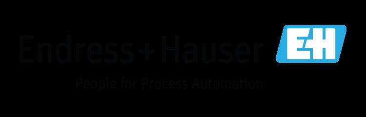 EndressHauser Logo