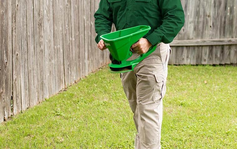 tech treating outside lawn for pests