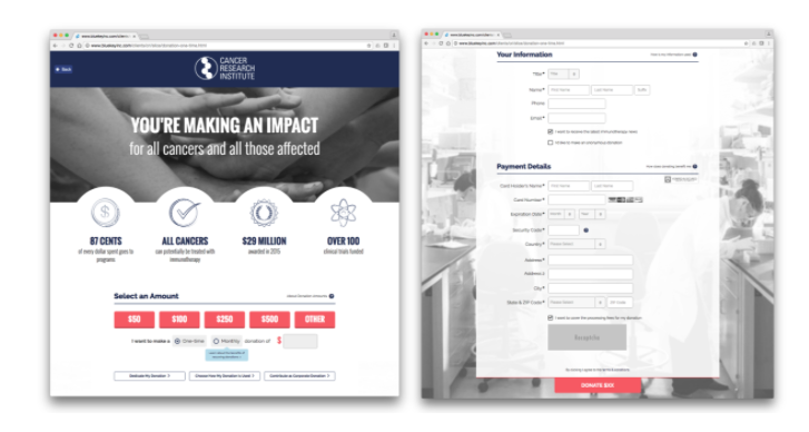 Cancer Research Institute Online Donation Process, Choose Your Donation Amount Page and Check-Out Page