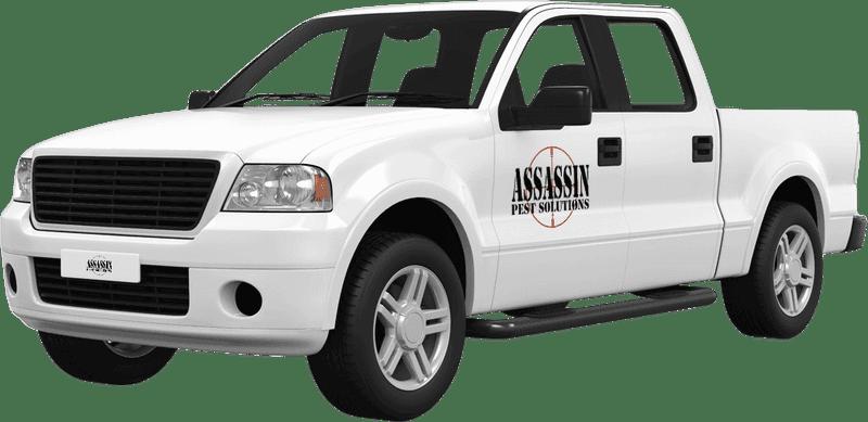 assassin company truck