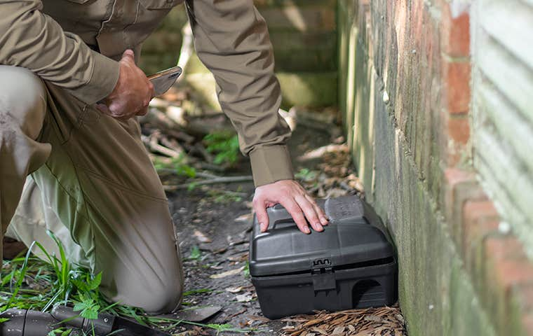 a tech checking a rodent station