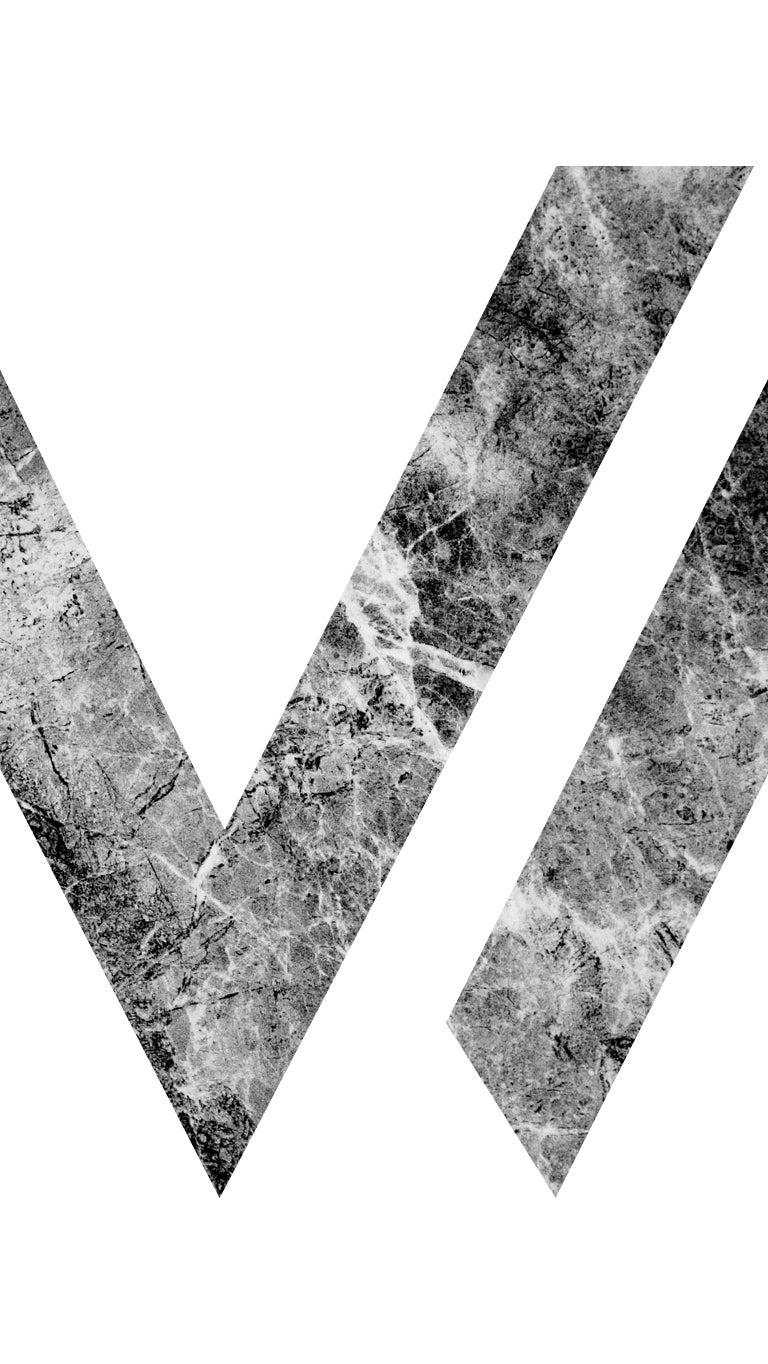 V2 Wellness Website Image