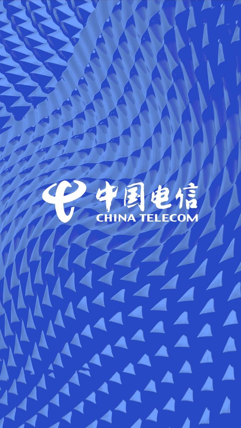 China Telecom Global Website Image