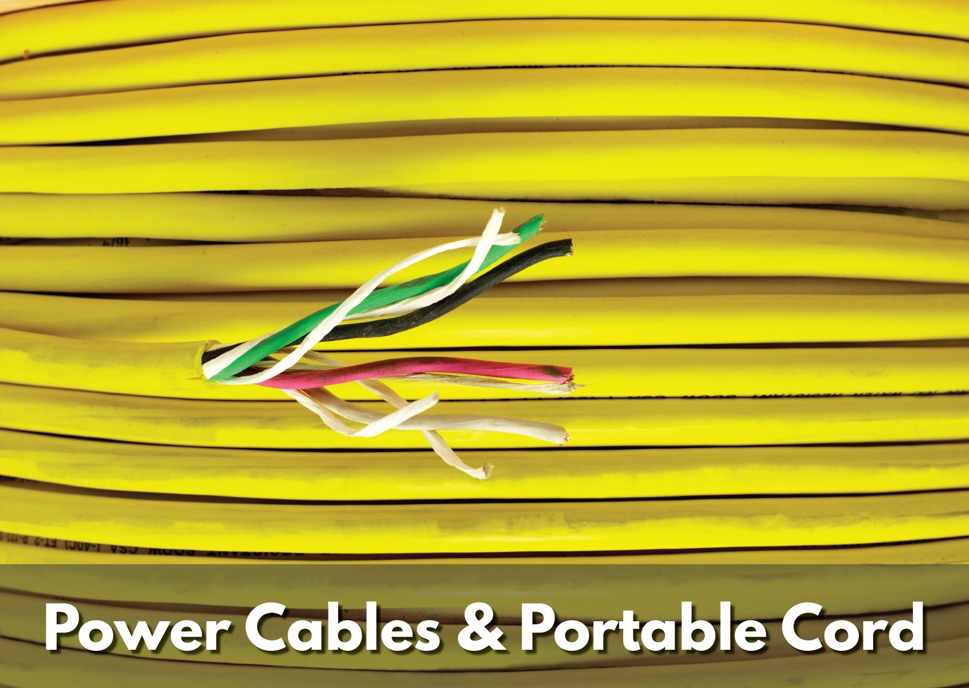 Texcan - View All Products - Power Cables & Portable Cord.jpg