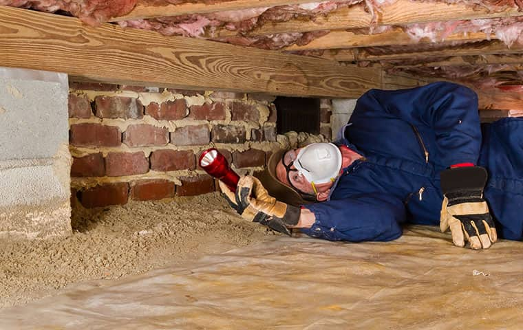 technician inspecting crawl space in home