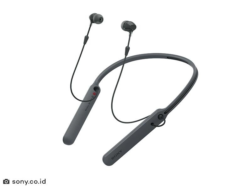 Sony Wireless Headphones W1 C400