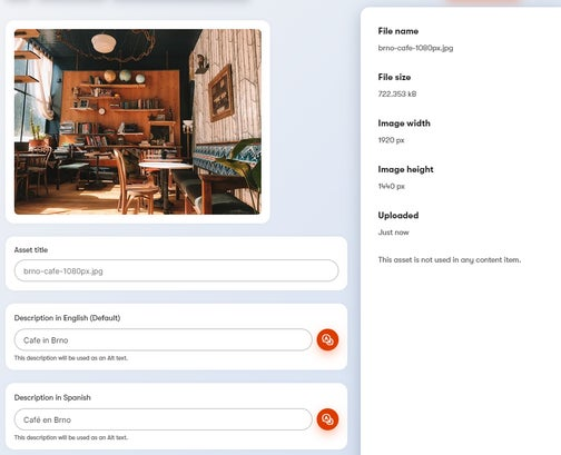 Asset details inside the app.