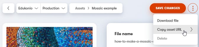 Where to find and copy asset URL