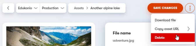 Where to delete an unused asset