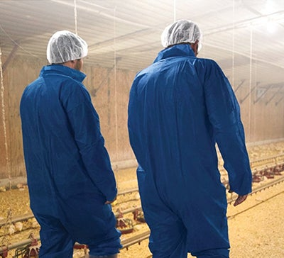photo Poultry Producers Walking Through Chicken House