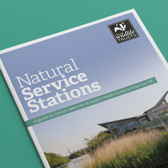 Wildlife Trusts Cover Teaser