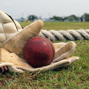 Paul Banton Cricket