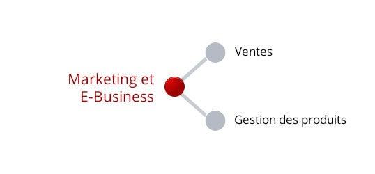 Marketing & E-business